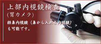 上部内視鏡検査(胃カメラ)経鼻内視鏡(鼻から入れる内視鏡)も可能です。